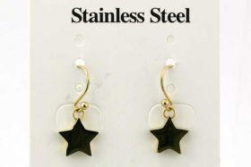 Rustfri stål ørehænger stjerne guld
